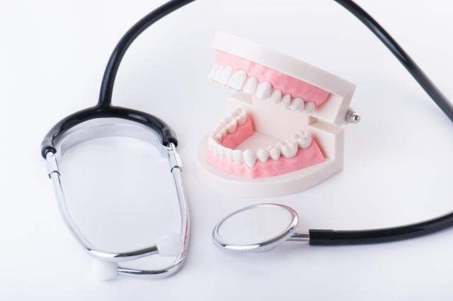 img 013 - 子供の時に矯正すると、大人になってから歯並びが再び悪くなることはないですか?